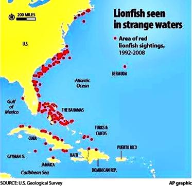invasion-map-of-lionfish